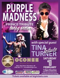 Purple Madness Prince Tribute flyer